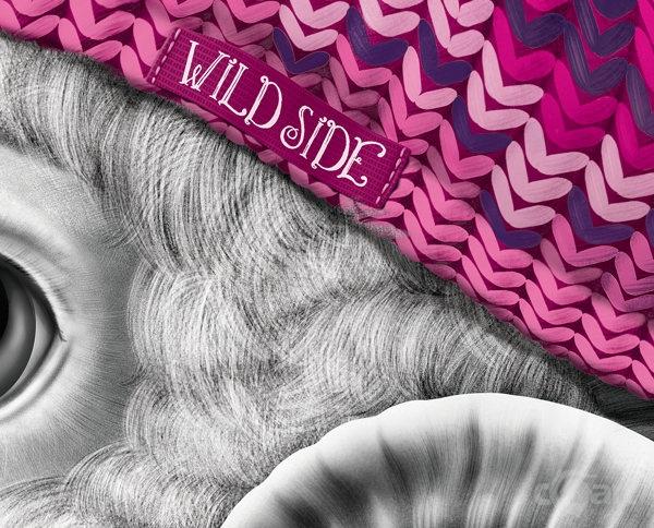 Wild Side苹果酒包装插图设计
